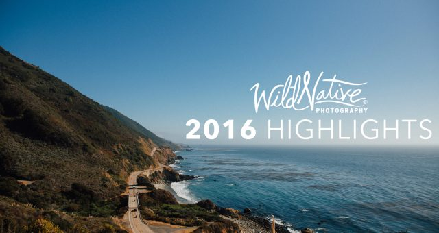 Wild Native Photography 2016 Highlights