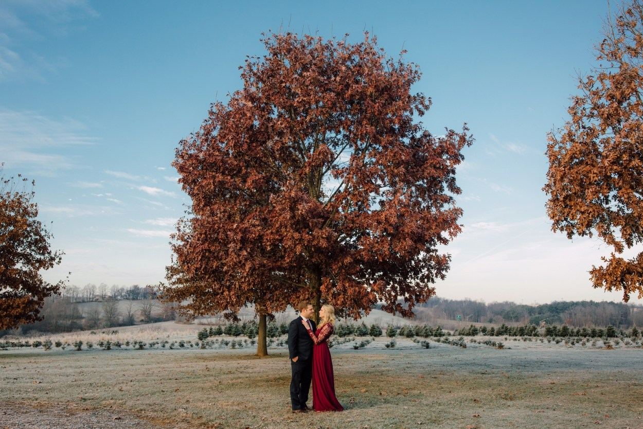 Erika + Zane - Tree Farm Engagement Session