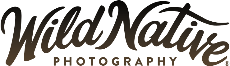 Wild Native Photography
